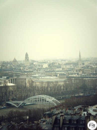 View from the first level of the Eiffel Tower.
