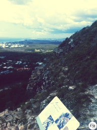 Mt Coolum